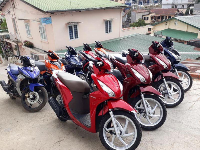 Cho thuê xe máy ở Đà Lạt