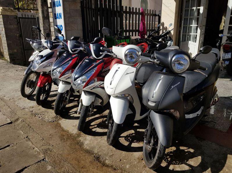Cho thuê xe máy ở Đà Lạt - hinh 4