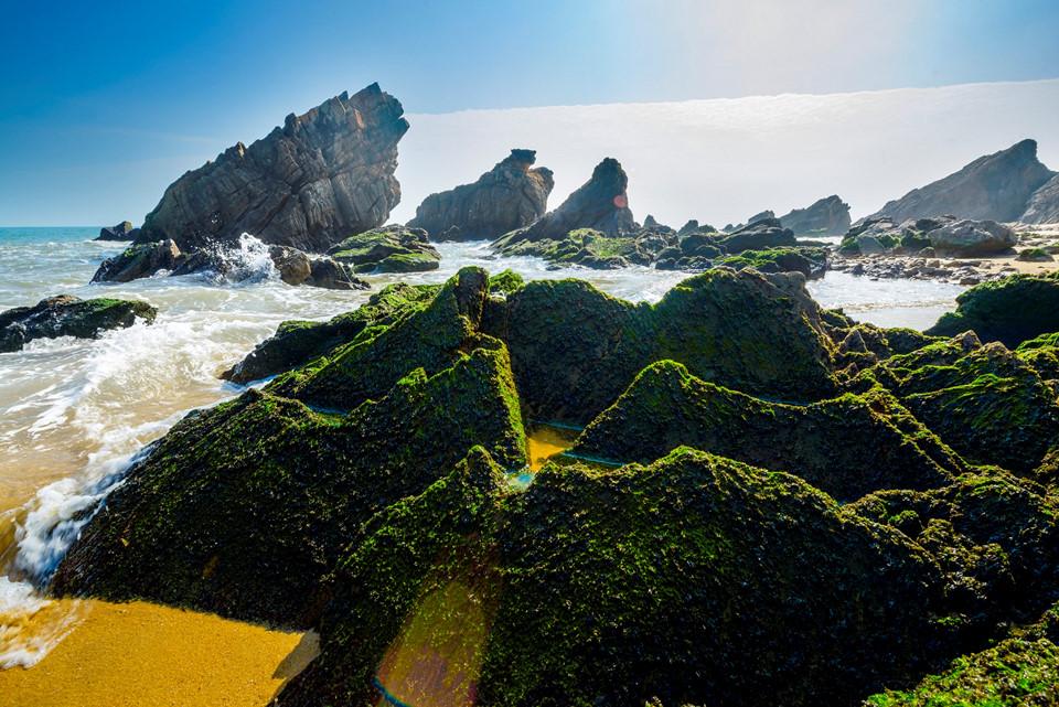 Biển Đá Nhảy Quảng Bình - hinh 7