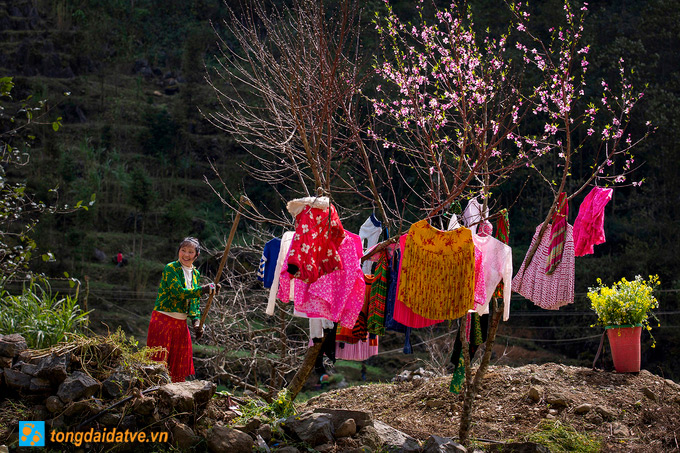 Đến Hà Giang ngắm sắc xuân trên cao nguyên đá - hinh 10