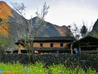 Đến Hà Giang ngắm sắc xuân trên cao nguyên đá - hinh 8