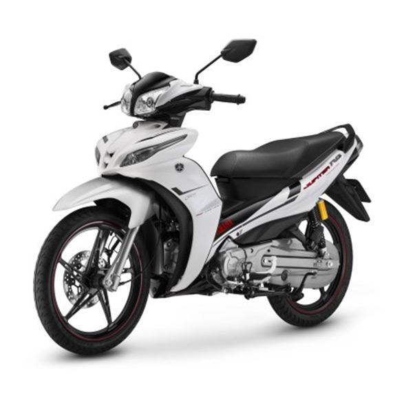 Cho thuê xe máy - hinh 012