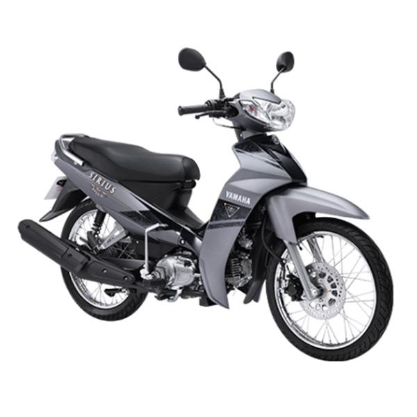 Cho thuê xe máy - hinh 010